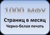 МФУ в офис 1000 моно